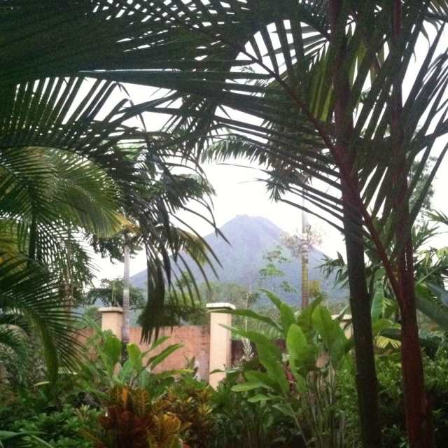 Arenal from my hotel room! I'm so glad I got this picture of it on Friday night!
